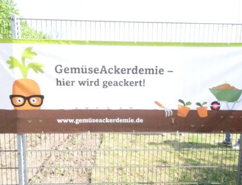 """In der Otto-Nagel-Schule wird jetzt ge""""ackert"""""""